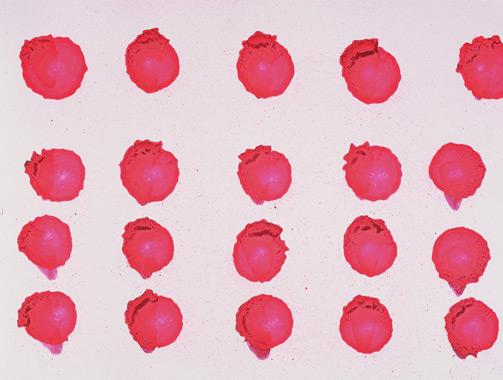 2010, 24x32, Lack, Acryl auf Papier